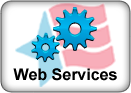 WebServicesIcon